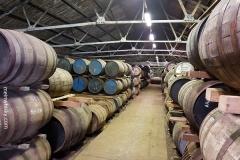 Ardbeg_Distillery26
