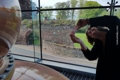 Lindores_Abbey_069